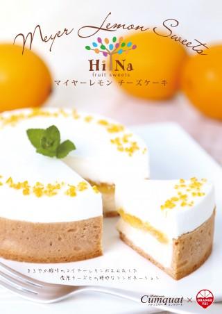 ポスター_チーズケーキ