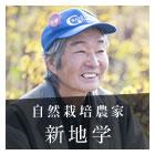 夢を咲かせたい 真冬の菜の花 コウサイタイ-新地学